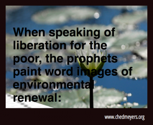 prophecies and environment