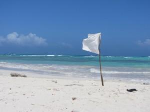 wave white flag